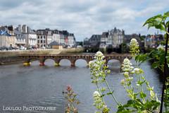 pont (Loulou Photographie) Tags: art architecture nikon 200 pont carton mm 18 tamron oeuvre d3200