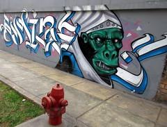Graffiti and Hydrant (earthdrifting) Tags: hydrant graffiti lima per pueblolibre greenape