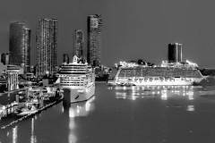 View of downtown Miami, Florida, U.S.A. / The Magic City (Lago Tanganyika) Tags: city urban usa building skyscraper cosmopolitan downtown cityscape metro florida miami highrise cruiseship metropolis metropolitan sunshinestate portofmiami miamidadecounty
