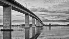 South side (Explored) (OzzRod) Tags: bridge blackandwhite panorama monochrome river newcastle stitch pentax hunter stockton k50 autotakumar35mmf23 pentaxsingleinjune2016