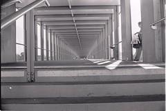 0031 (coloredsteel) Tags: street leica white black self 35mm graffiti stand kodak iso400 f14 trix rodinal developed m6 nokton trainspotting ulm voigtlnder developing trainwriting