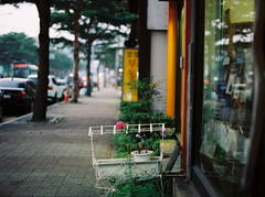 ... (june1777) Tags: street mamiya evening 645 kodak bokeh c snap seoul portra 800 mamiya645 80mm f19 seochon sekor tonguidong