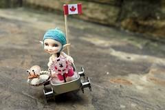 Hang on Shelley! (Jay Bird Finnigan) Tags: fairyland realpuki papilio gokart snail miniature car canada flag altoids tin