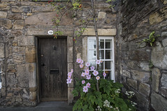 Home Sweet Home (Echoes89) Tags: door old city house home window saint stone scotland andrews centre
