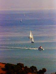 DSC_6608 - Copy (digifotovet) Tags: sanfrancisco california bay boat sail