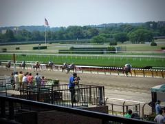New York July 2008 (Dingerz) Tags: newyork belmontpark horseracing thoroughbred secretariat americanpharaoh nyra racetrack