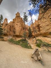 Bryce Canyon (Nam Ing) Tags: brycecanyon inspirationpoint sunsetpoint hoodoos brycecanyonnationalpark bcnp