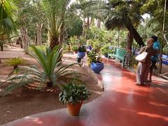 DSCN2671 (dbohaty) Tags: jardin majorelle morocco almaghrib