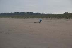 IMG_1074 (EadaoinFlynn) Tags: curracloe beach sea ireland irishsea wexford