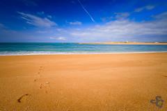 En route pour le bonheur (Stphane Gavoye) Tags: sable barredetel plage mer erdeven bretagne france fr