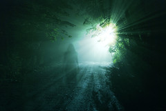Light Is Calling Home (jna.rose) Tags: street night light longexposure nikon ghosting ghost figure woman trees lightray rays dirtroad gravel road nighttime nightphotography dark