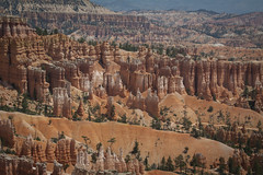 Ancient Towers: Bryce Canyon National Park, Utah (Life_After_Death - Shannon Day) Tags: hoodoo hoodoos pastel orange red yellow gold blue stripe striped stripes layer layered striated striation erosion erode time bryce canyon national park utah desert mountain mountains canyons landscape outdoor outdoors brycecanyonnationalpark nationalpark canon canoneos canoneos50d 50d eos dslr canondslr eosdslr canoneos50ddslr photography lifeafterdeath lifeafterdeathstudios lifeafterdeathphotography shannonday shannondayphotography shannondaylifeafterdeath lifeafterdeathstudiosartandphotography shannondayartandphotography copper