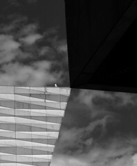 Kiss - the Gull (stephenbryan825) Tags: liverpool museumofliverpool abstracts architecture buildings contrast glass graphic selects