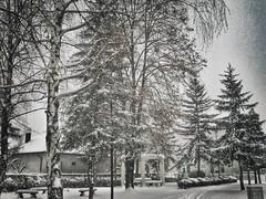 12501479_1558763747746866_43790084_n (dragica_basaric) Tags: winter snow wonderland magic magical snowy flake nature green colours streets treet postcar postcards love train phot january 03 2016 photo photography d b danchy92 dragicabasaric lapovo serbia srbija srb sumadija dbphotography