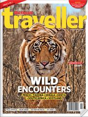 Outlook-Traveller-October2016 (dickysingh) Tags: tiger tigers ranthambore ranthambhorenationalpark stalking hunting eyes frontal