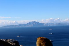 North Africa from Gibraltar (sir_knight_thomas) Tags: ape gibraltar visitgibraltar africa ceuta