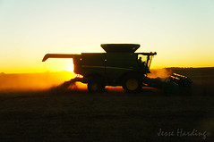 Harvest Light (jesse_n_harding) Tags: harvest harvest16 soybeans beans soy combine outdoors sunset crops oilseeds ag agriculture ne nebraska