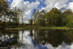 woodland reflections (Jason Davies Photography) Tags: withybushwoods nature naturereserve reflections trees water wildlife clouds canonphotography canon canon1200d 1200d sky sigmalenses sigma1850f2845 outdoors outdoor tourism visitpembrokeshire visitwales westwales jasondaviesphotography autumn autumncolours