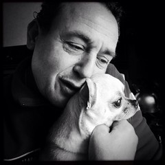 Silence tells a secret story (eschdali) Tags: portrait blackandwhite chihuahua netherlands beautiful amsterdam neroamet
