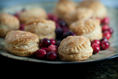 (Ciara Chase Photography) Tags: thanksgiving food dessert yummy yum puff cranberry pastry puffpastry foodphotography