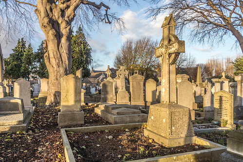 Mount Jerome Cemetery & Crematorium is situated in Harold's Cross Ref-100441