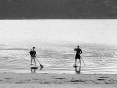 West Point 2014-12_3029.jpg (travis_chau) Tags: sydney australia natinalpark westheadlookout westpointlookout