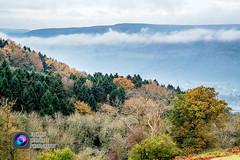 Llangattock Dawn (Electric Lemonade Photography) Tags: autumn mist mountain black colour tree river dawn nationalpark fuji brecon beacons usk mynydd afon llangattock xe1 llangatwg