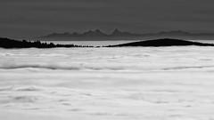Donon (novembre 2014) - 204_DxO (sebwagner837_55) Tags: vosges mer nuages donon alpes bernoise finsteraarhorn oberland bernois wetterhorn schreckhorn bas rhin basrhin alsace grand est