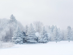 Féérie des neiges (Amiela40) Tags: blue winter white house snow tree beauty magic hiver bleu beauté neige maison arbre blanc magie frimas féérie platinumheartaward bestcapturesaoi