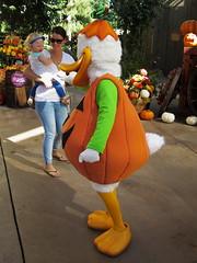 Disneyland Halloween Carnival IMG_2791 (SunCat) Tags: california travel carnival vacation halloween canon duck all disneyland donald powershot anaheim 2014 s120