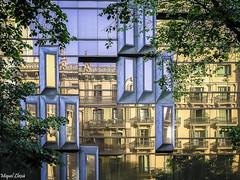 Reflexes Urbans-3