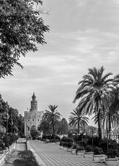 Margem sevilhana do Guadalquivir e ao fundo a Torre del Oro - Sevilha, Andaluzia, Espanha (shooterb9) Tags: bw sun rio canon river blackwhite sevilla spain guadalquivir espanha europa europe noir pb seville andalucia espana heat andalusia sevilha andaluzia bestfood whataplace 60d rivercollection torredelorogoldentower