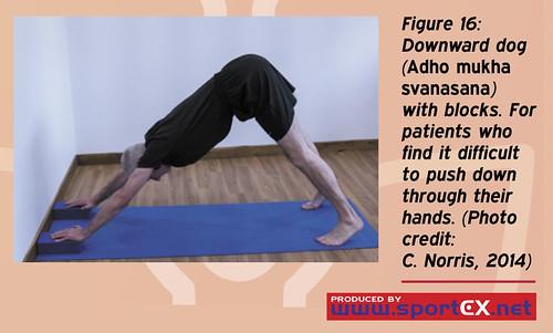 43DY25_4 (sportEX journals) Tags: yoga rehabilitation massagetherapy sportex sportsinjury sportsmassage sportstherapy sportexdynamics strengtheningexercises sportsrehabilitation