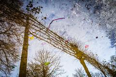 Reflet d'automne (Ducleto71) Tags: nature belgique royal bruxelles parc reflets debruxelles