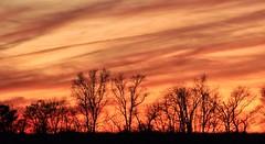 Sunset (tarheelz11) Tags: longexposure trees sunset red sky orange black colors lines silhouette clouds sunsetting goldsboro northcaroline manualmode canont3i 1827mmlens