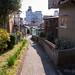 渡鹿野島 画像17