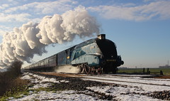 Bitterns final run (Duck 1966) Tags: bittern 4464 a4 spalding mainline steam locomotive lner train flickrdiamond diamondclassphotographer