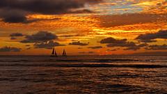 Hawaiian Skies Oahu