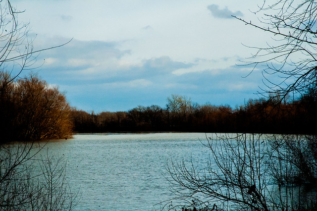 Wabash Lowlands - Halfmoon Pond - January 6, 2015