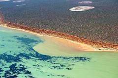 Shark Bay WA -  DSC3187