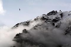 Alpi (MILESI FEDERICO) Tags: wild italy panorama detail primavera nature landscape nikon europa europe italia nuvole nuvola details piemonte dettagli tamron alpi piedmont paesaggio valsusa dettaglio 2016 valdisusa milesi alpicozie valledisusa d7100 tamron70200 visitpiedmont visitpiedmon valliolimpiche nikond7100 milesifederico