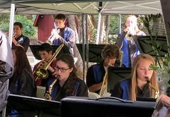 IMG_3777 (Rocklin High Music Boosters) Tags: animal creek blackberry farm band jazz sanctuary 2016