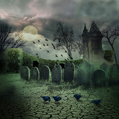 The old cemetery (jaci XIII) Tags: house muro church cemetery birds wall casa chapel aves igreja cemitrio crows tombstones capela lpides corvos