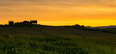 Yellow Tuscan Sky (jfusion61) Tags: flowers sunset italy orange yellow clouds spring nikon tuscany fields siena 2470mm d810