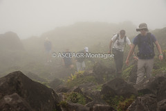 DSC_0263-Montagne-Pelée