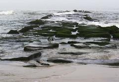 Atlantic City, NJ (lotos_leo) Tags: landscape newjersey outdoor nj atlanticcity