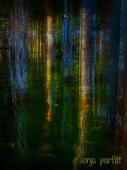 pilons (Sonja Parfitt) Tags: holiday water alaska manipulated warf layered