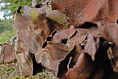 Tanz der rostigen Waldgeister 2 (DianaFE) Tags: rost wald figur blech zufall