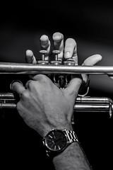John Michael Bradford's Trumpet (JazzAscona) Tags: jazzascona jazzfestival jazzasconafestival jazzsoul jazz jazzclub jazzascona16 ascona asconajazzfestival dancing gothaswingdancers simonamolinari guitar albiedonnellyssupercharge swissjazzaward jamsession papa joes christianwillisohnssouthernspirit theprimatics casin locarno audience ambience ambiente 2016