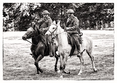 Hamilton volunteer Cavalry (Metro Tiff) Tags: horses hamilton rifles sabre worldwarone ww1 1915 brigade reinforcements expeditionary canadianmountedrifles 8thcanadianinfantry hamiltonvolunteercavalry